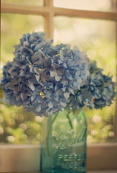 ) centerpiece-- hydrangea in mason jar Hortensia Hydrangea, Hydrangeas, Blue Hydrangea, Bouquet Champetre, Ball Jars, Floral Arrangements, Flower Arrangement, Planting Flowers, Beautiful Flowers