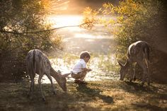 At One With Nature by Adrian Murray on 500px