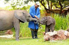 Zimbabwe Elephant Nursery ~ ZEN