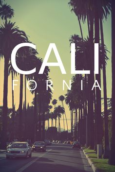 Image uploaded by naomi ✨. Find images and videos about summer, california and palm trees on We Heart It - the app to get lost in what you love. California Tumblr, California Dreamin', California Palm Trees, Palm Tree Sunset, Sunset Wallpaper, Tumblr Wallpaper, Wallpaper Ideas, Iphone Wallpaper, Word Pictures Art