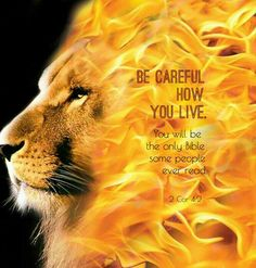 """Be careful how you live. You will be the only bible some people will ever read. 2.Cor.4:2 """"But we have renounced the shameful, underhanded things, not walking with cunning or adulterating the word of God; but by making the truth manifest, we recommend ourselves to every human conscience in the sight of God."""""""