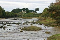 La rivière du Guillec à marée basse (1188 visites, score 3.97)