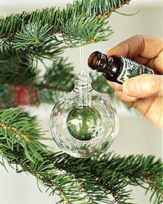 Scented Ornament...love this idea