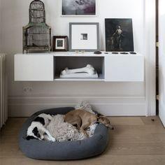 Pózoló kutyák a lakásban - új őrület minden állatbarátnak,  #állat #állatbarát #hóbort #kedvenc #képek #kis #kutya #kutyus #lakásban #őrület #otthon #otthon24 #pózoló #szoba #új, http://www.otthon24.hu/pozolo-kutyak-a-lakasban-uj-orulet-minden-allatbaratnak/