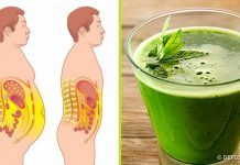 Looking to burn belly fat fast? Discover how this popular 'party' drink can shrink fat cells and help you lose weight naturally. Burn Stomach Fat, Burn Belly Fat Fast, Fat Belly, La Constipation, Belly Fat Burner, Visceral Fat, Low Carbohydrate Diet, Fat Burning Drinks, Healthy Beauty