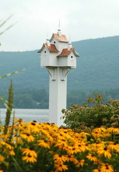 When I grow up, I would LOVE to have a flower garden in my backyard with a birdhouse somewhere in it!
