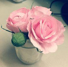 Hoa hồng giấy nhuns