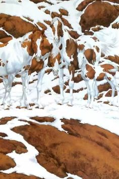 How Many Horses Do You See In This Gorgeous Snow Scene? This Is Tricky… Horses, without a doubt are the most beautiful animals on earth. On few animals look as graceful as the magnificent horses with an elegant and artistic horse haircut. Andalusian Horse, Appaloosa Horses, Most Beautiful Animals, Beautiful Horses, Pretty Horses, Horse Love, Animals And Pets, Cute Animals, Bev Doolittle