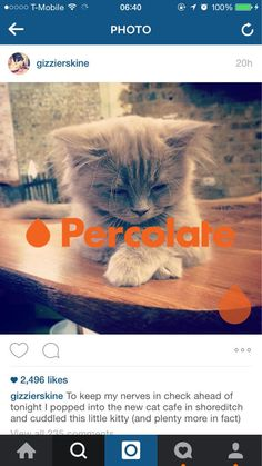 percolate - tsor