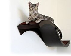 Urban Pet Haus - Large Wave Perch  The perfect solution for small spaces, the wave perch easily mounts to the wall and provides a comfy lookout and lounge for your kitty. Stylish and sophisticated this perch will match your pet's needs with your own modern décor.