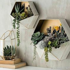 25 Inspiringly Stylish DIY Bohemian Bedroom Decoration Ideas To Copy. diy bohemian bedroom Check out these beautiful DIY Bohemian bedroom decoration ideas that you can make easily and cheaply! Pick the best one and style up your bedroom now! Succulent Wall Art, Succulent Wall Gardens, Bohemian Bedrooms, Diy Casa, Deco Floral, Home And Deco, Home Decor Trends, Decor Ideas, Decorating Ideas