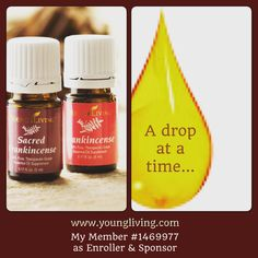 Ready for Frankincense? Ask me how to get wholesale pricing... #frankincense #youngliving #essentialoils #natural #health #wellness #oilinfusedliving #triharmonyoilers #DaretoLivetheLifeYouLove #lavender #christmas #giftideas #mood #meditationtime #prayer
