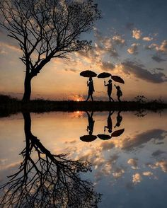 lovely reflection