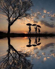 lovely reflection