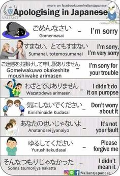 Apologies in Japanese