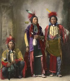Colored by Hand: Vintage Native American Photography Native American History, American Indians, American Bison, American Symbols, American Women, Native American Photography, Ashley Wood, Native Indian, Andy Warhol