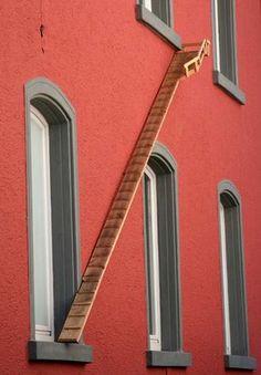 "TYWKIWDBI (""Tai-Wiki-Widbee""): Cat ladders"