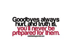 Goodbyes always hurt, and truth is, you'll never be prepared for them...even when you know the goodbye is not forever...<3