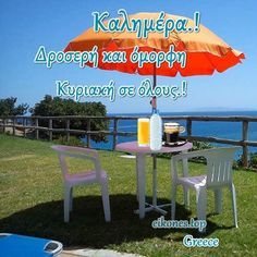 Beautiful Pink Roses, Good Morning, Greece, Outdoor Decor, Fun, Buen Dia, Greece Country, Bonjour, Good Morning Wishes