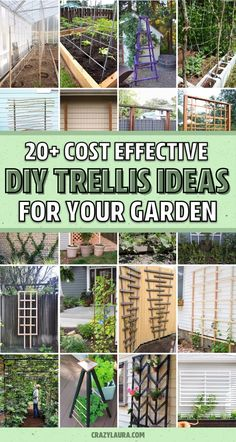 Want to build your own DIY trellis for your patio, backyard or garden? Check out these 20 super helpful tutorials to get started! Garden Arch Trellis, Diy Trellis, Garden Arches, Trellis Design, Trellis Ideas, Patio Trellis, Building A Trellis, Veg Garden, Balcony Garden