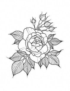 pattern tattoos meaning Flower Tattoo Arm, Flower Tattoo Shoulder, Flower Tattoo Designs, Shoulder Tattoos, Rose Outline, Marquesan Tattoos, Tattoo Outline, Flower Coloring Pages, Plant Drawing