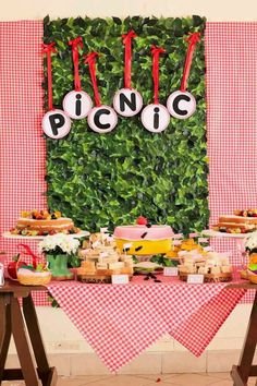 grassy backdrops....perfect for a picnic party on july 4th