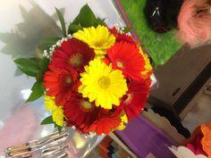 Il+fiore+di+oggi:+la+Gerbera