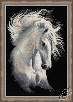 Andalusian Character - Cross Stitch Craft Kits by RIOLIS - 1451