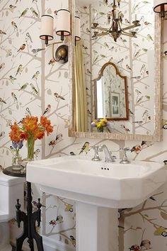 lauren - is this your paper? forgot to tell you, my entire life i grew up with peackcok wallpaper.  mom mom LOVED it!!!  i remember it well! sarah richardson sarah house 4 powder room bird wallpaper