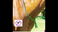 How to make a quick and easy neck rope for your horse using paracord. Neck ropes are great for transitioning to riding your horse without a bridle. Horse Bridle, Horse Gear, Rope Halter, Horse Games, Paracord Projects, Horse Training, Plaits, Horse Stuff, Pony
