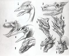 Part of my continuing quest to create an original-looking dragon. In this sketch, I tried several concepts: 1. Based on a pterosaur 2. Based on the skull I've used in my still life drawings 3. Base...