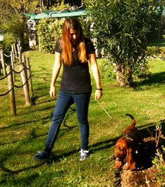 dog walking Bella