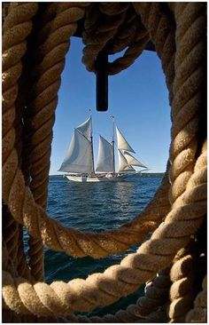 What a view! Tall ship through 'window' of rope.