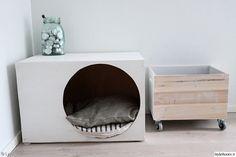 koiran peti,laatikko,laatikko pyörillä,puulaatikko,kynttilät