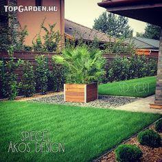 * Csináld magad kertépítés *: Kertépítés ötletek, megoldások Sidewalk, Patio, Modern, Plants, Gardening, Design, Trendy Tree, Side Walkway, Lawn And Garden