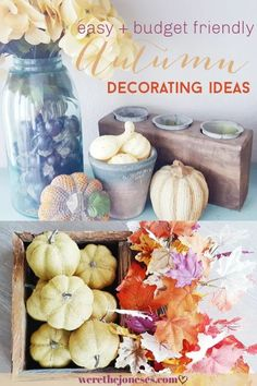 Favorite Fall Decor That's Easy + Affordable  We're The Joneses #falldecor #affordabledecor #falldecorideas #dollartree