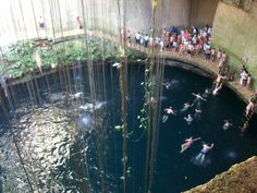 "Photos of Cenotes -A cenote (English: /sɨˈnoʊtiː/ or /sɛˈnoʊteɪ/; Spanish: [seˈnote]; plural: cenotes; from Yucatec Maya dzonot or ts'onot,[1] ""well""[2]) is a deep natural pit, or sinkhole, characteristic of Mexico, resulting from the collapse of limestone bedrock that exposes groundwater underneath. Especially associated with the Yucatán Peninsula and some nearby Caribbean islands, cenotes were sometimes used by the ancient Maya for sacrificial offerings. The term derives from a word used…"