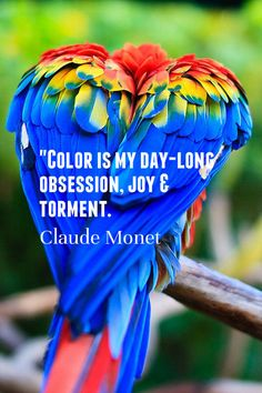 Inspiring Color Quote