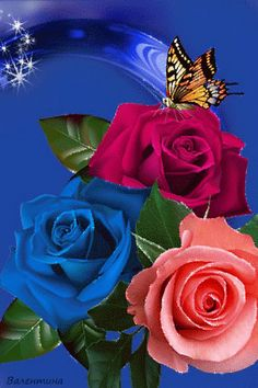 By Artist Unknown. Rose Flower Wallpaper, Flowers Gif, Butterfly Wallpaper, All Flowers, Beautiful Flowers Wallpapers, Beautiful Rose Flowers, Beautiful Gif, Beautiful Butterflies, Butterfly Pictures