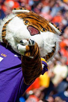 Very well done LSU tiger:)