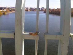 En Key Bridge, que comunica a Arlington con Georgetown, han comenzado a poner candados