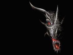 Black Dragon   Black Dragon Wallpaper 200x300 Black Dragon Wallpapers