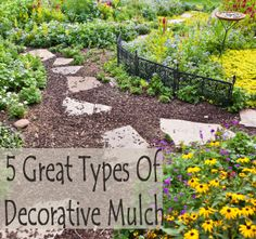 The definition of mulch is anything that goes on top of soil. Different mulches have different functions and uses.
