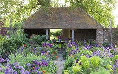 Sarah Raven's self sowing Oast House Garden with the lots of allium 'Purple Sensation'