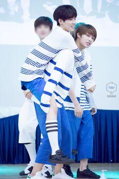 Ship jun with wonwoo so hard