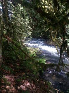 Clear blue creeks of Oregon.