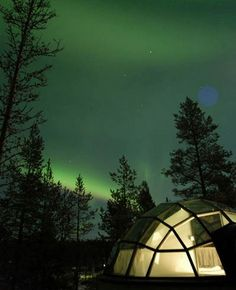 Igloo Village-  to see northern lights and spend night in an igloo with Cálaeb