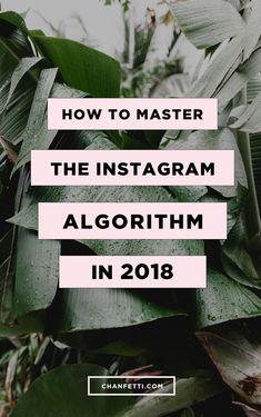 2018 Blogging Tips for Instagram. Master the Algorithm. Grow your following. Gain Exposure. \/\/ pinterest: brennastasia