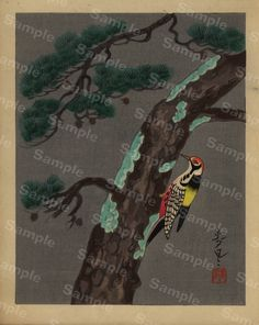 Gorgeous Vintage Japanese hand colored woodblock Painting from 1940's era signed by artist Birds and trees by Printvilla4you on Etsy https://www.etsy.com/listing/498125494/gorgeous-vintage-japanese-hand-colored