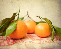 Still Life Photography, Satsumas, oranges, fresh fruit, rustic kitchen art, photo, food photography, vintage style, orange, red, green. $30.00, via Etsy.